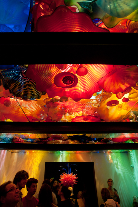 chihuly teaser